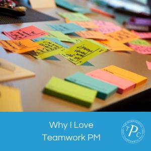 Why I Love Teamwork PM