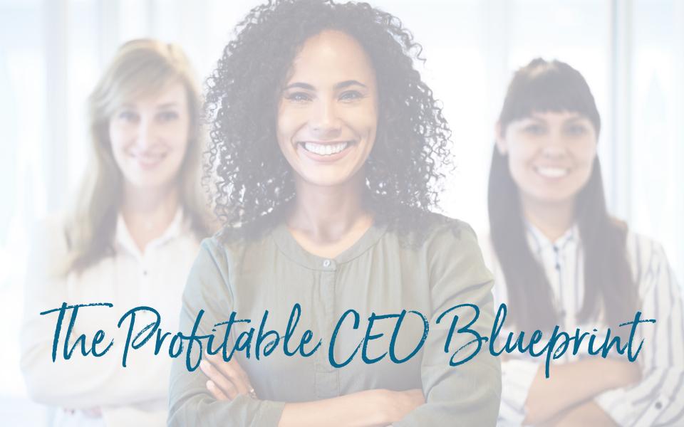 The Profitable CEO Blueprint 2021